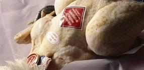 Vlees van Wolvega - Wolvega - Kip